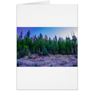Tarjeta Bosque y cielo del valle de Yosemite