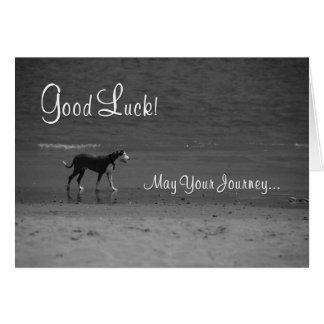 Tarjeta Buena suerte - perro en la playa
