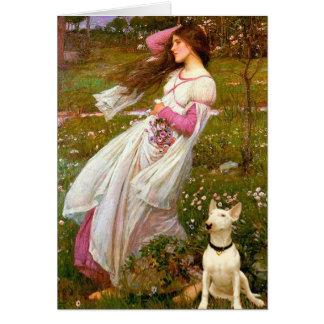 Tarjeta Bull terrier 1 - Windflowers