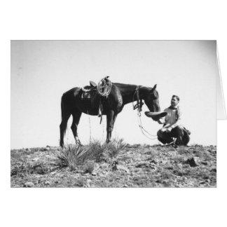 Tarjeta Caballo que come de un gorra de vaquero