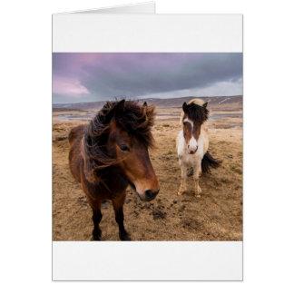 Tarjeta Caballos de Islandia