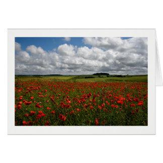 Tarjeta Campo rojo de la amapola de Dorset