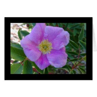 Tarjeta Canción rosada suave de la floración del