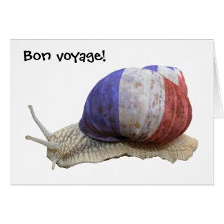 Tarjeta Caracol francés de la bandera