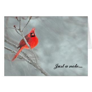 Tarjeta Cardenal en nieve