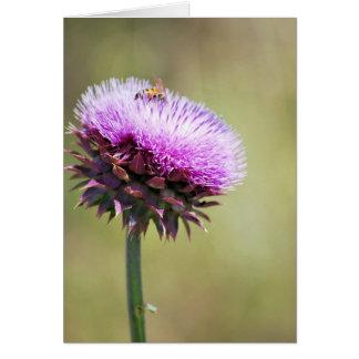 """Tarjeta """"Cardo con la colección de la abeja"""""""