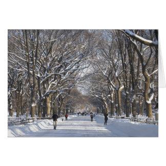 Tarjeta Central Park de la alameda del invierno