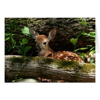 Tarjeta [Cervatillo] del bosque - cualquier ocasión
