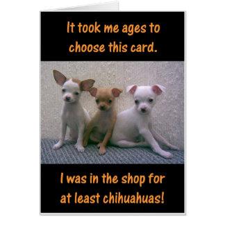 Tarjeta Chihuahuas