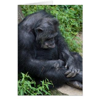 Tarjeta chimpancé cumpleaños-que pone mala cara tardío