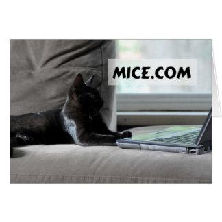 Tarjeta chistosa del arte de Frameable del gato