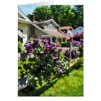 Tarjeta Clematis púrpura en la cerca rústica