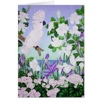 Tarjeta Cockatoo violeta