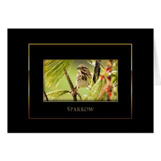 Tarjeta Colección del pájaro del gorrión - negro/oro