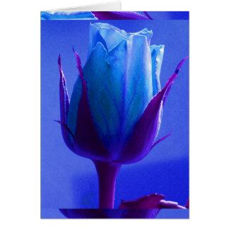 Tarjeta color de rosa azul I del placer -