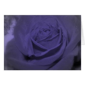 Tarjeta Color de rosa púrpura