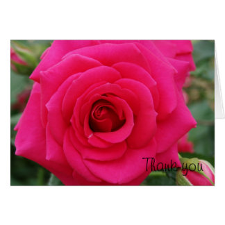 Tarjeta color de rosa rosada del de agradecimiento