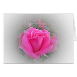 Tarjeta Color de rosa rosado con blanco