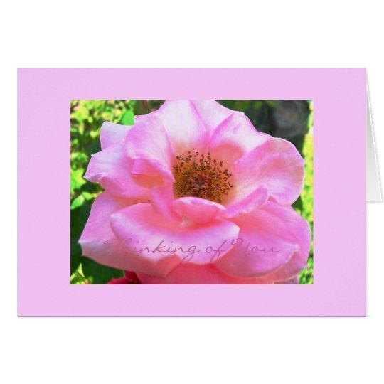 """Tarjeta """"color de rosa rosados""""… El pensamiento en usted"""