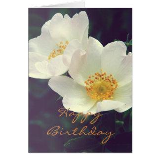 Tarjeta color de rosa salvaje de las floraciones