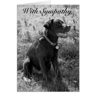 Tarjeta Con la condolencia (perro casero)