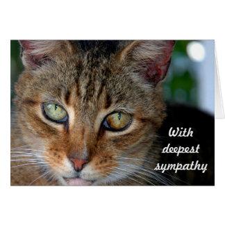 Tarjeta Condolencia 2 del gato