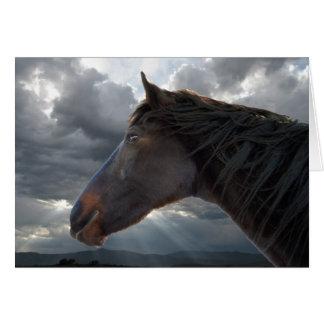 Tarjeta Condolencia de la pérdida del caballo