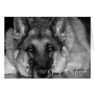 Tarjeta Condolencia de la pérdida del mascota del pastor