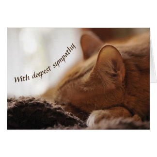 Tarjeta Condolencia del gato
