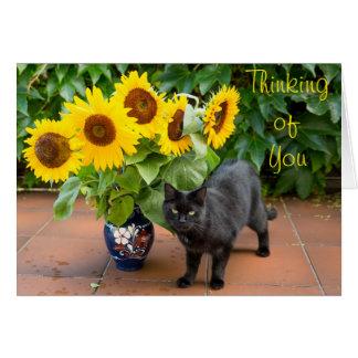 Tarjeta Condolencia del gato con los girasoles