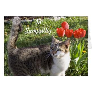 Tarjeta Condolencia del gato con los tulipanes rojos