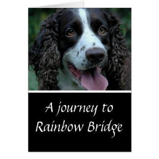 Tarjeta Condolencia del perro de aguas de saltador