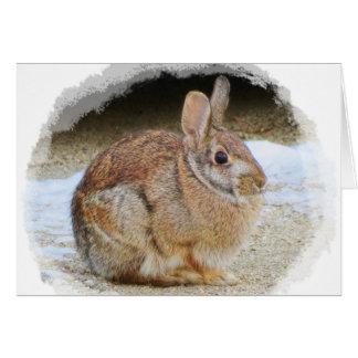 Tarjeta Conejo de marzo con la ilustración