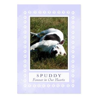 Tarjeta conmemorativa del mascota - azul divino tarjetas de negocios