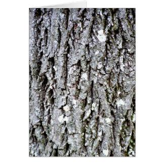 Tarjeta Corteza de un árbol de nuez dura