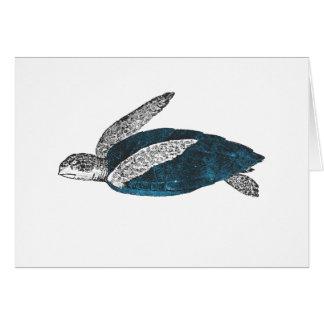 Tarjeta Cosmic turtle 2
