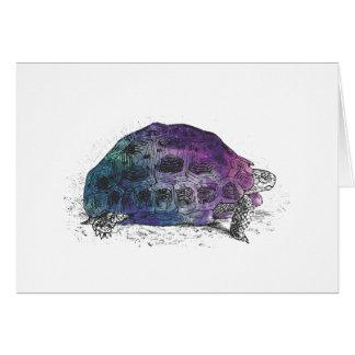 Tarjeta Cosmic turtle 4