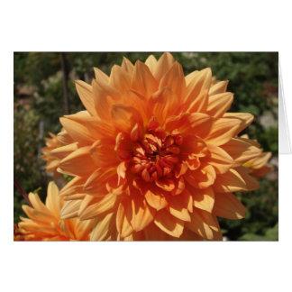 Tarjeta Crisantemos