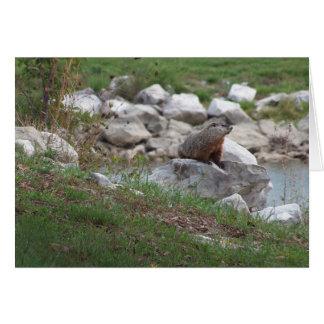 Tarjeta Critter en el lago