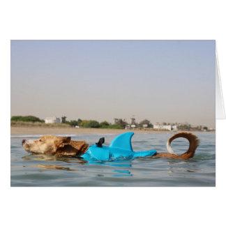 Tarjeta ¡Cuando el nadar con los tiburones sea intrépido,