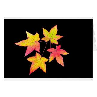 Tarjeta Cuatro hojas de otoño coloreadas en fondo negro