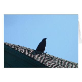 Tarjeta Cuervo en el tejado