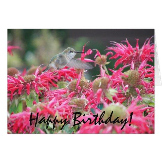Tarjeta Cumpleaños de la foto del colibrí