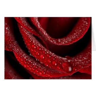 tarjeta/cumpleaños del día de madres del rosa rojo tarjeta de felicitación