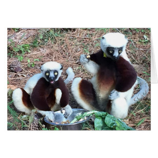 Tarjeta Cumpleaños divertido del Lemur