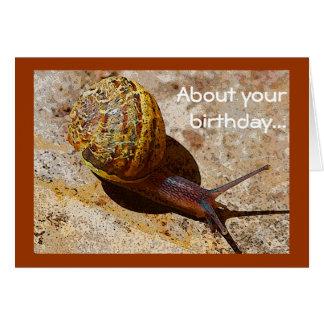 Tarjeta Cumpleaños tardío del snail mail