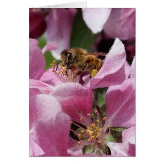 Tarjeta Cumpleaños tardío u Occation de la abeja de Buzy