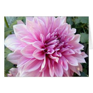 Tarjeta Dalia rosada y blanca
