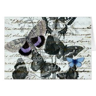 Tarjeta de Austen de las mariposas del vintage