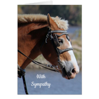 Tarjeta de condolencia belga del caballo